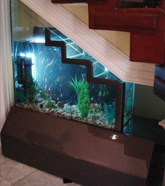 Aquarium Design Ideas - Ideas Home Design